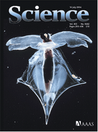 The cover of Science, July, 2004 showing the pteropod Clio pyramidata (Gilmer and Harbison 2004)