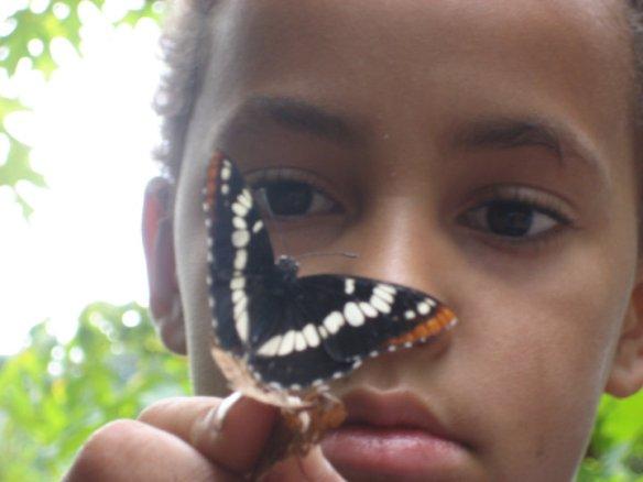20100823 Amadi w: Butterfly